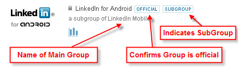 LinkedIn Groups - Subgroup Information