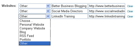 Custom website links on LinkedIn
